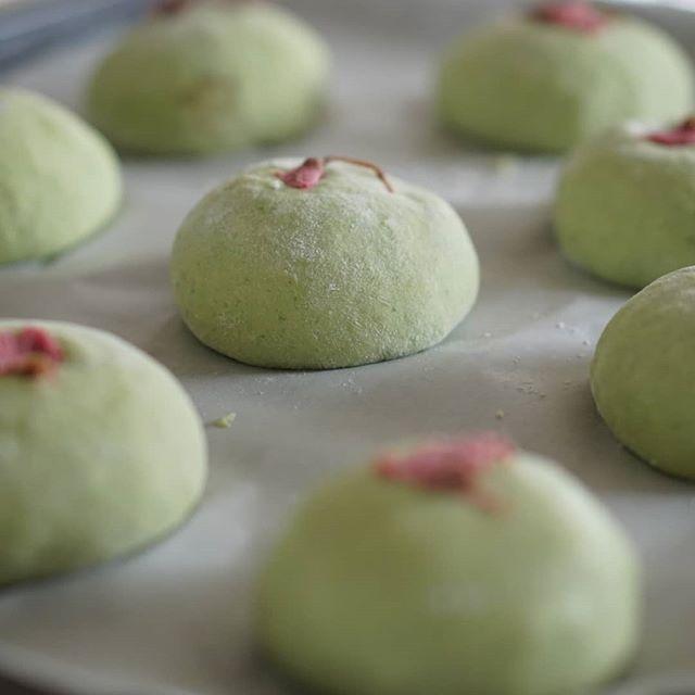 甜菜糖であんこを炊いてフーチバー(よもぎ)あんぱん♫ フーチバーをた〜ぷり練り込んで春のあんぱんもう夕方だー#薬膳#自家製あんこ#手作りパン#手作りおやつ#よもぎ#春の訪れ